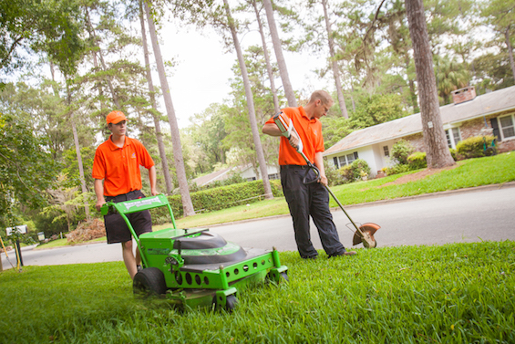 5 Types Of People Who Benefit From Quiet Lawn Care
