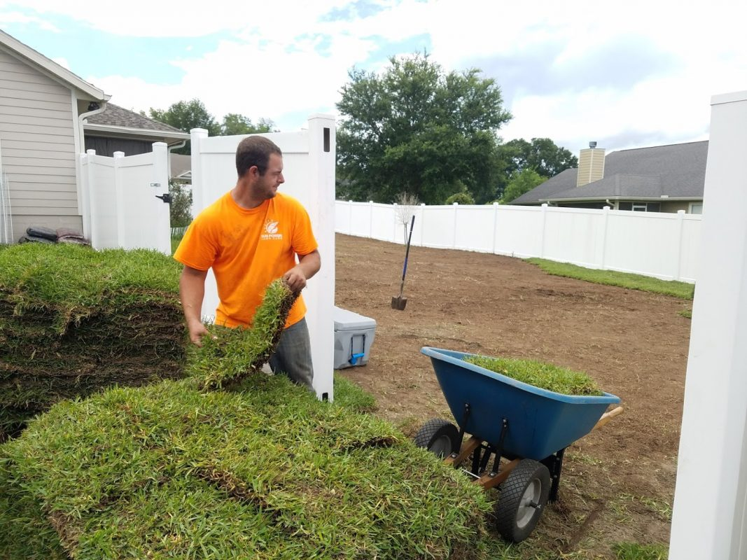 sod install gainesville lawn service