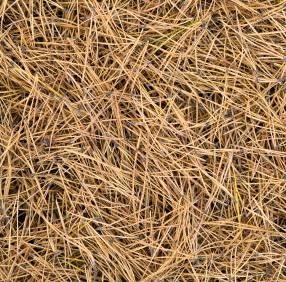 Pine Straw Mulch Gainesville Lawn Service