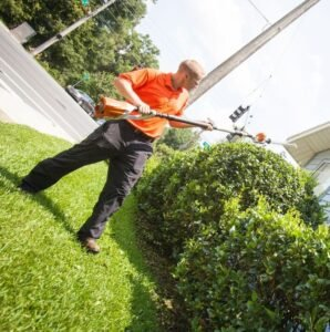 hedge trimming gainesville fl