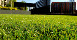 3 advantages of a lawn care maintenance package
