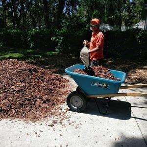 kyle weeds mulch