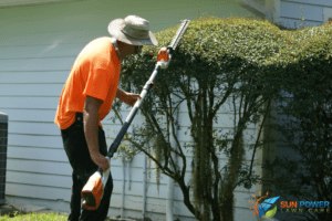 Trim hedges and tree branches to help your lawn grass