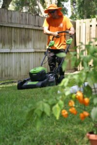 Electric lawn mowing gainesville fl