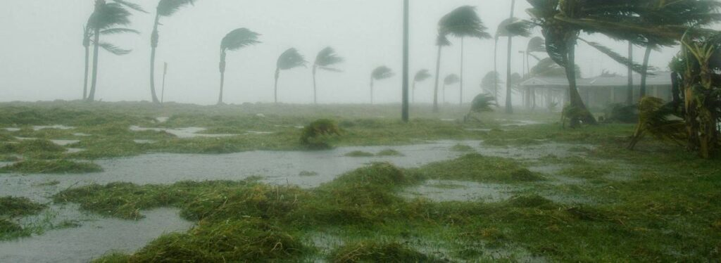 How to prepare your yard for a hurricane